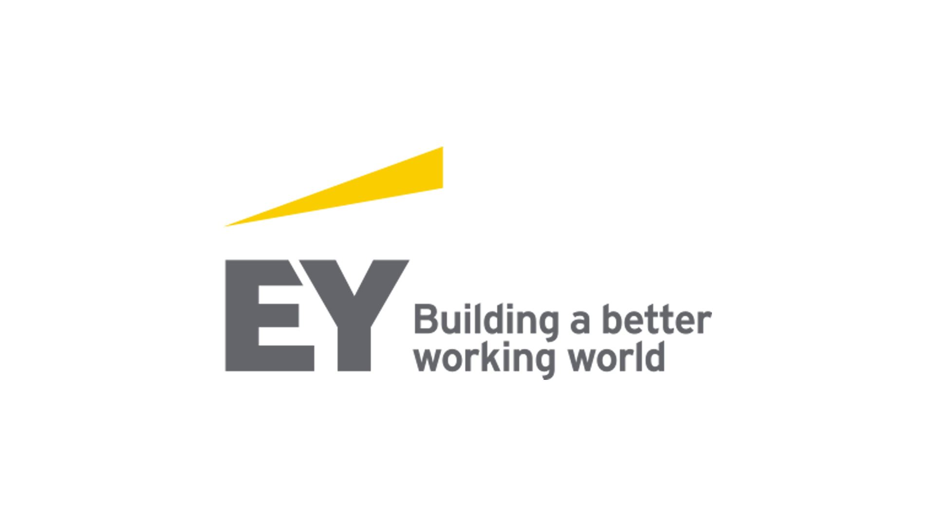EY Germany Workshop: Financial Services Advisory + Dinner